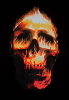 T - Shirt Flaming Skull